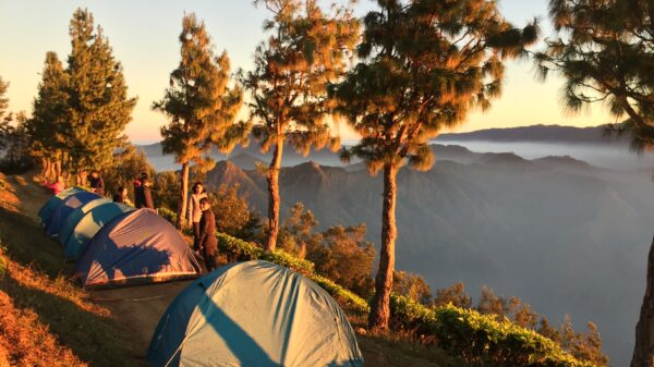 Camping with Trekking and Meals, Kurangani Hills