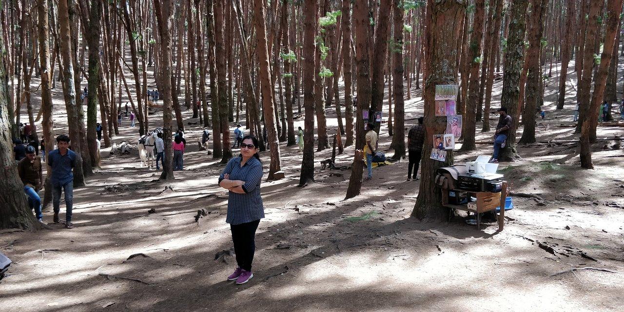 Forest Tour in Kodaikanal